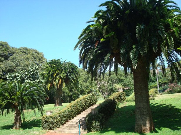 durban-botanic-gardens-south-africa-rg
