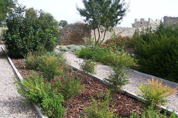 e-monasterio-de-santa-maria-de-matallana-villalba-de-los-alcores-valladolidvalladolid_monasterio_de_matallana_jardin_plantas_aromaticas_lou