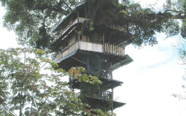 ecu-jardin-botanico-de-las-orquideas-puyo-botanico_pastaza