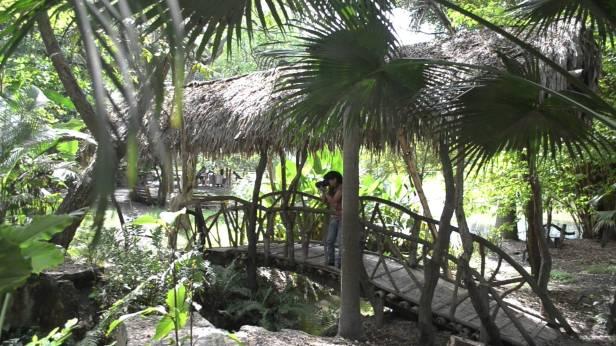 ecu-jardin-botanico-de-portoviejo-ecuador