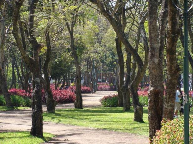 guatemala-avenida-de-las-americas-lk