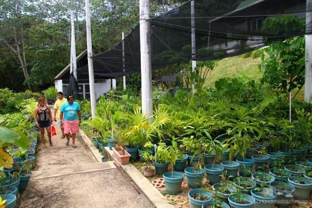 jardin-botanico-de-san-andres-colombia