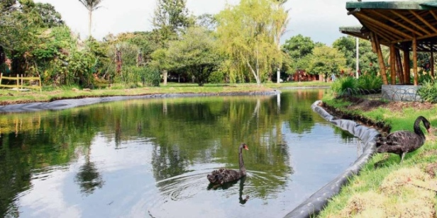 jardin-botanico-de-cali-kk