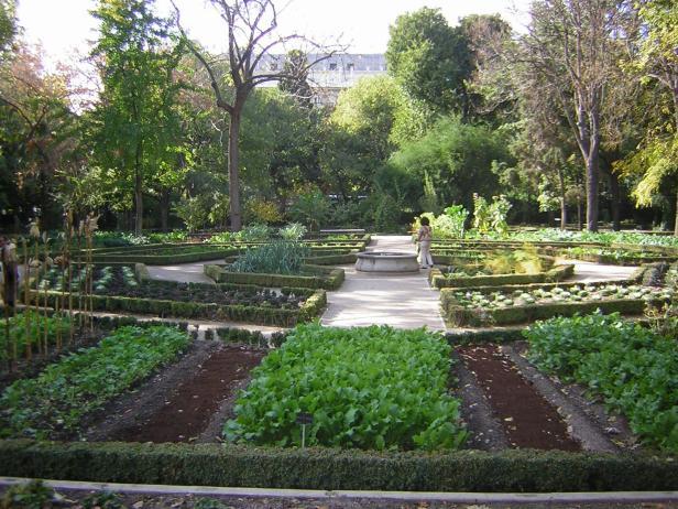jardin-botanico-de-madrid-3-3