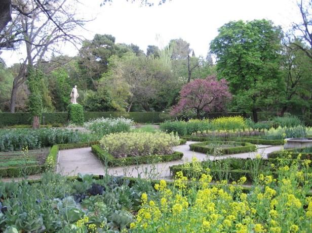 jardin-botanico-de-madrid-4_redimensionar-3