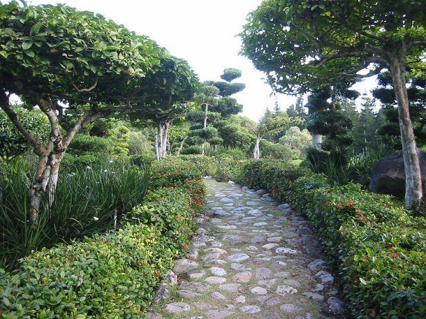 jardin-botanico-de-santo_domingo-2