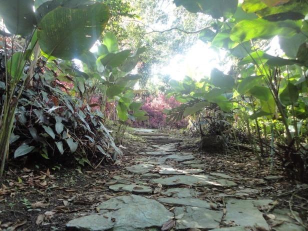 jardin-botanico-san-jorge-r-ibague-2s
