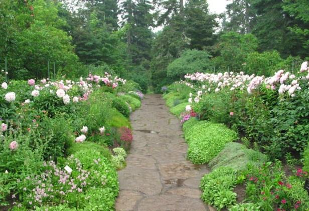 jardin-de-metis-4-2