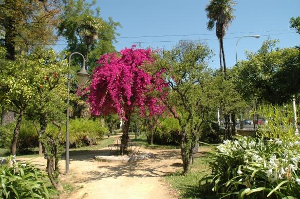 jardines-de-las-delicias-04