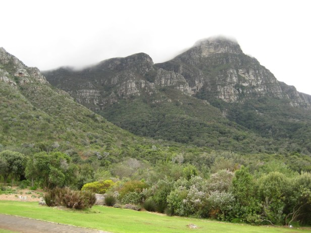 kirstenbosch-national-botanical-garden-ht