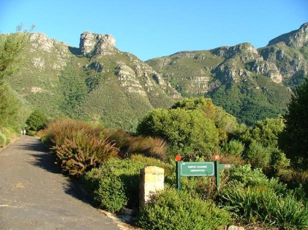 kirstenbosch-national-botanical-garden-hzc