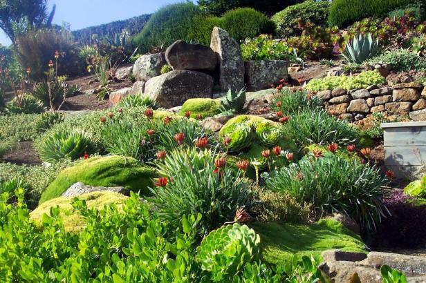 lanarch-castle-gardens-12