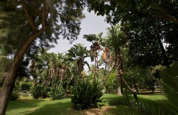 ma-nouzhat-hassan-garden-a