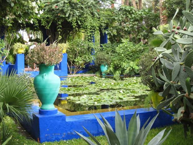 majorelle-lillypond-2