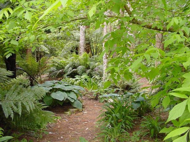 moss-green-gardens-new-zealand