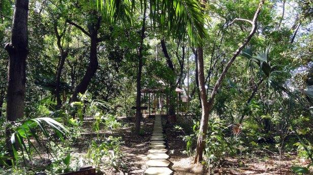 ni-arboretum-nacional-juan-bautista-salas-managua-nicaragua-b