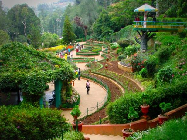ooty-botanical-garden-botanical20garden20ooty