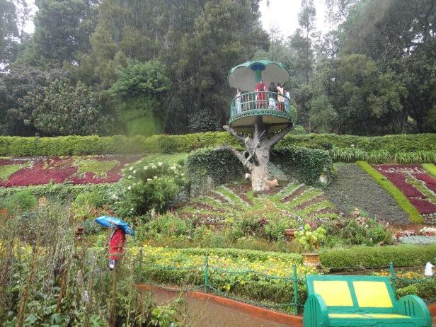 ooty-botanical-garden-hs