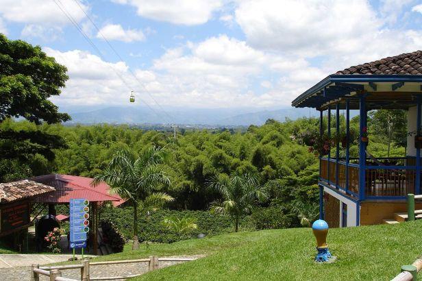 parque-del-cafe-bosque_de_guadua_en_el_parque_del_cafe-colombia