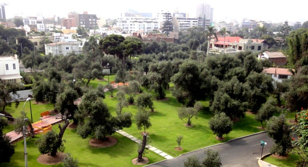 parque-el-olivar-lima-peru-01olivar02