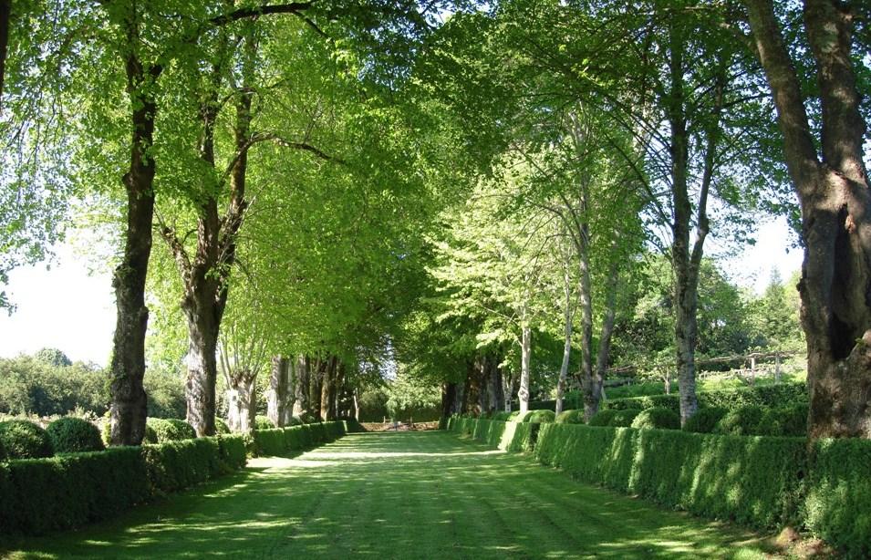 Rasgos de la historia mundial de la jardineria cap xiv for Estudiar jardineria