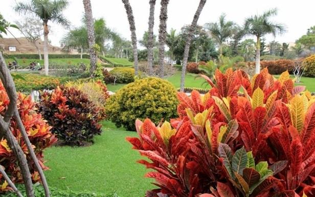 peru-jardin-botanico-parque-de-las-leyendas-a