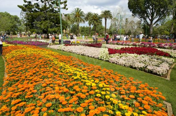 queens-park-gardens-toowoomba-qld-_dsc8342