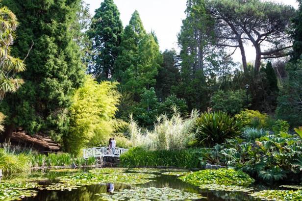 royal-tasmanian-botanical-gardens-x-kn