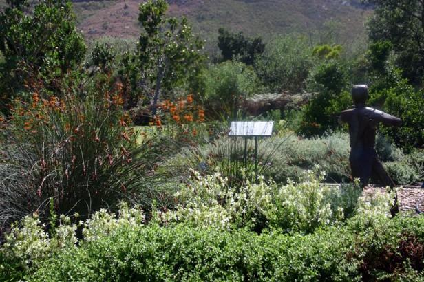 sa-harold-porter-jardin-botanico