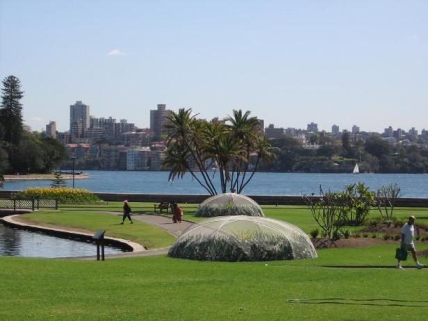 sydney-botanic-garden-x7