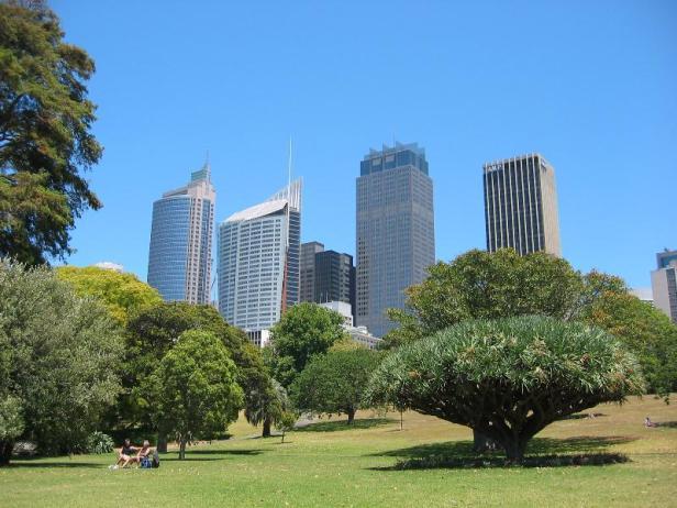 sydney-botanical-garden-1-2