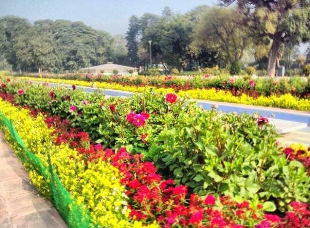 talkatora-garden-delhi-flor