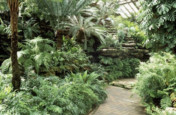 usa-garfield-park-conservatory-de-jens-jensen