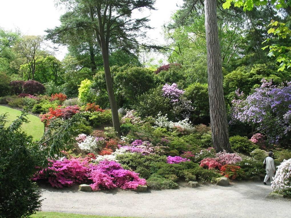Cap Xi Estilos Gardenesque Y Victoriano Jardines Sin
