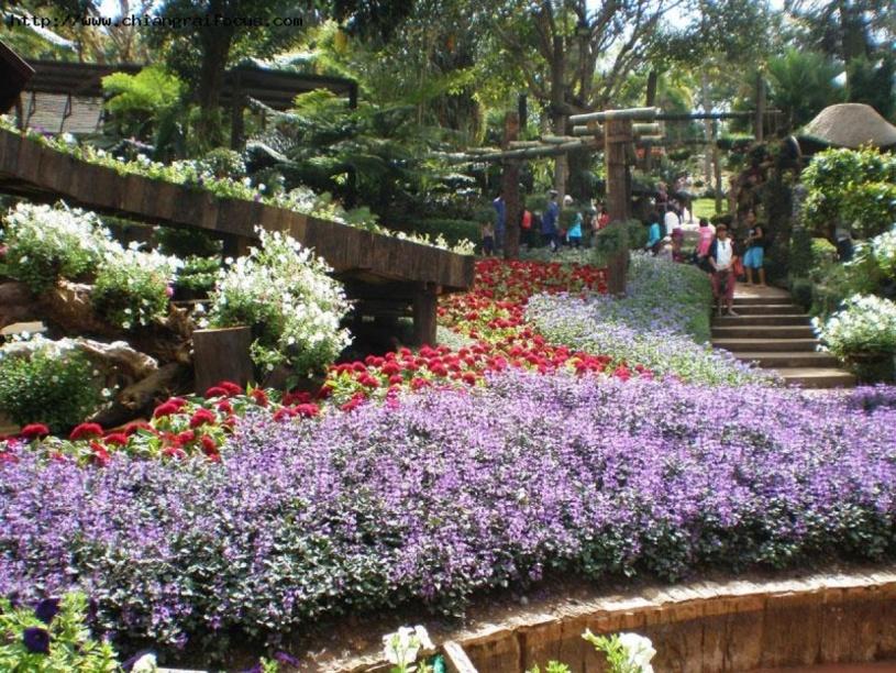 Jardines de tailandia jardines sin fronteras - Jardines baratos ...