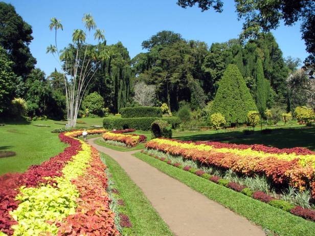 botanical_garden_of_peradeniya_03-2