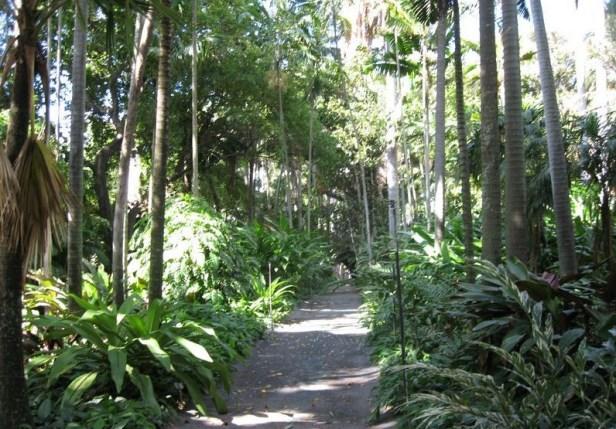 foster_botanical_garden