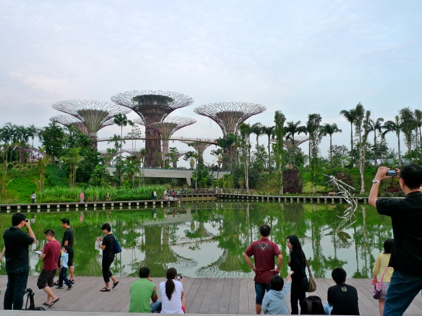 gardens_by_the_bay_singapore_-_201
