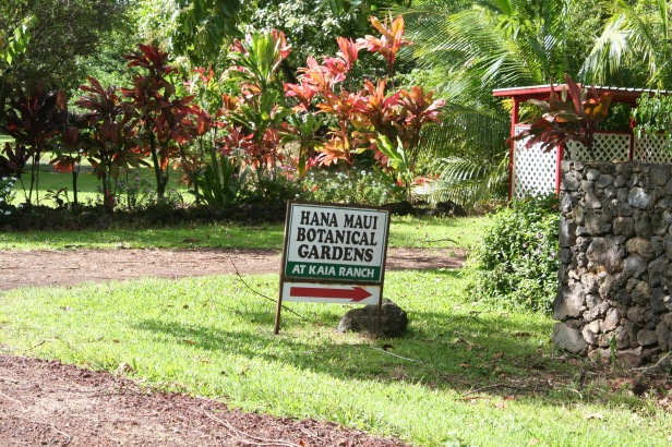 hana-maui-botanical-gardens-at-kaia-ranch