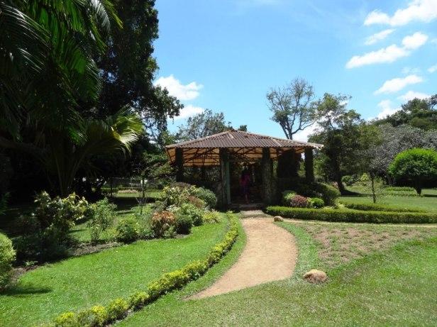 henarathgoda-botanical-gardens-kjk