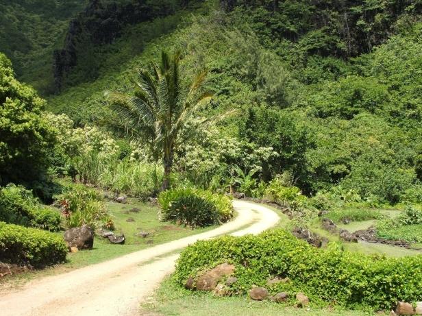 limahuli-national-tropical-_garden-hawaii-2-2