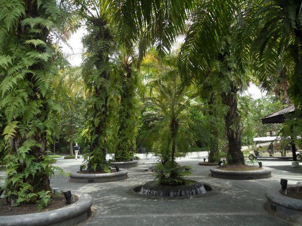 national-orchid-garden-xz