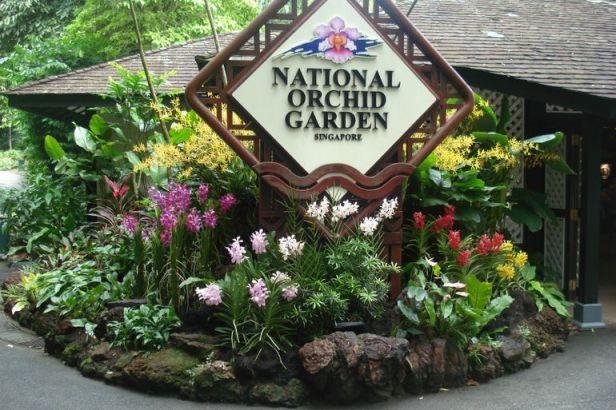national-orchid-garden