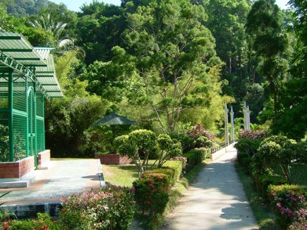 penang-botanic-garden15