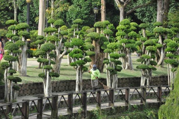 perdana-botanic-gardens-and-kl-qf