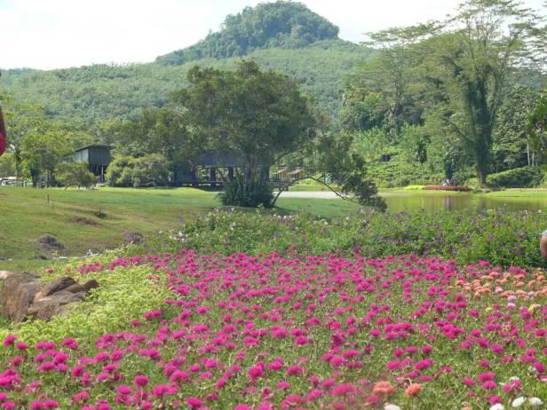 seethawaka-botanical-garden-agarden-3