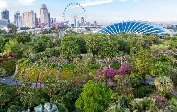 singapore-gardens-by-de-bay