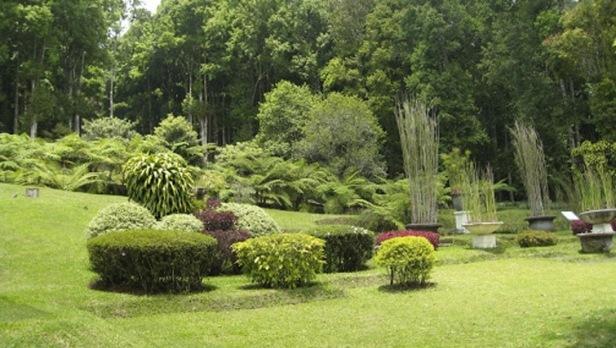 ubud-botanic-garden-abotanic-garden-ubud
