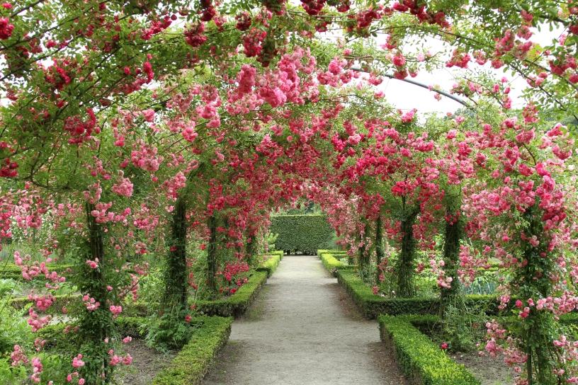 Jardines publicos de holanda jardines sin fronteras - Jardines de tulipanes en holanda ...