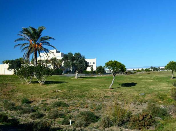 d73baa980 Andalucia Oriental.-Málaga, Granada, Jaén y Almería – Jardines sin ...